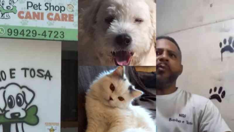 Acusado de mortes de animais, dono de pet shop em Carapicuíba (SP) ameaçou tutora: 'vai dar m* pra senhora'
