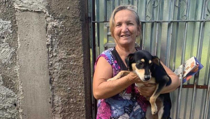 Cuidadora morre e voluntárias realizam campanha para adoção mais de 45 animais em Rio Claro, SP