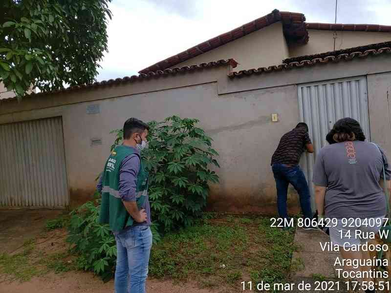 Animais vítimas maus-tratos são resgatados em residência de Araguaína (TO) após ação do MP