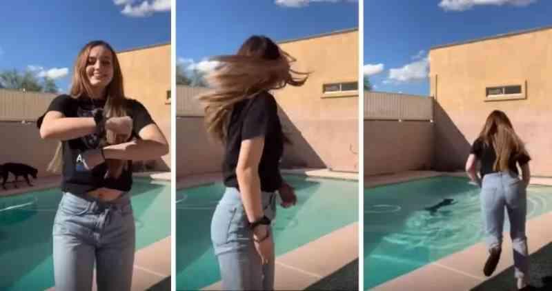 Garota interrompe vídeo no TikTok para salvar cachorro que caiu na piscina