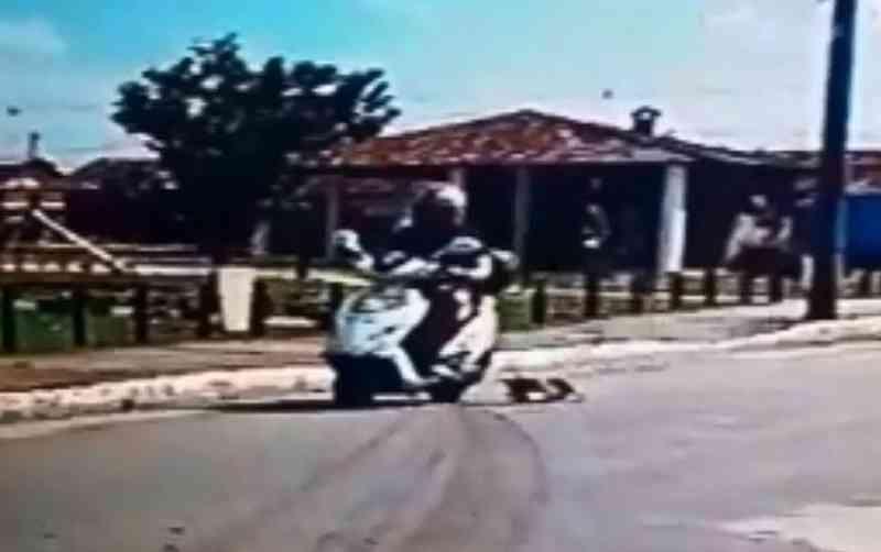 Vídeos: mulher em moto arrasta filhote de cachorro pelas ruas de Satuba, AL