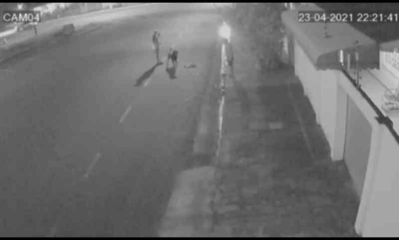 Câmeras de segurança flagram homem soltando cachorro para atacar gata comunitária no Amapá