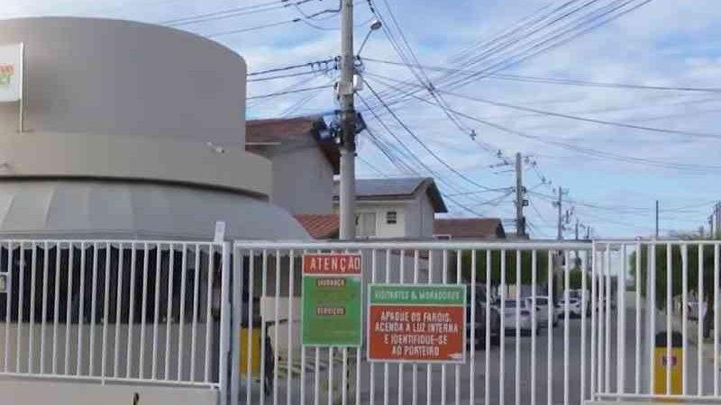 Moradores denunciam morte de gatos em conjunto residencial em Juazeiro, BA