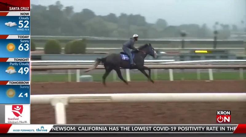 Hipismo: mais 2 cavalos morrem em pista de corrida na Califórnia; já são 37 desde 2020