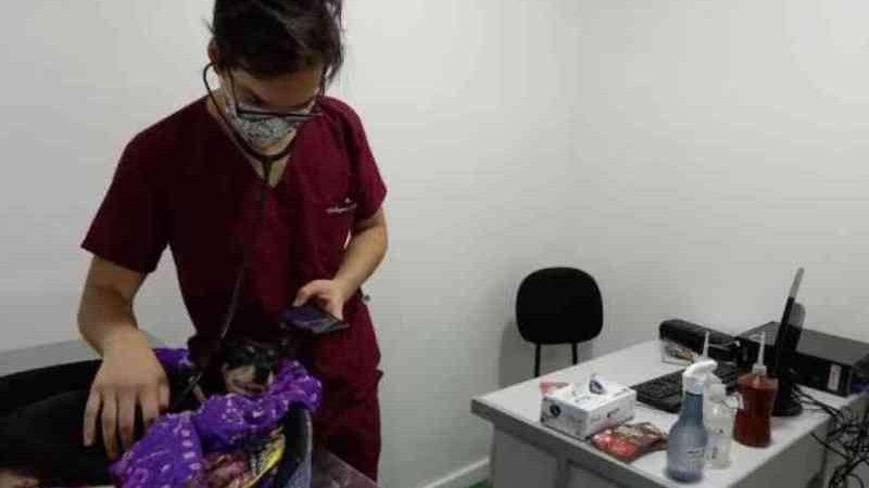 ONG ameaça abandonar Hospital Veterinário, mas Prefeitura de Belo Horizonte garante funcionamento