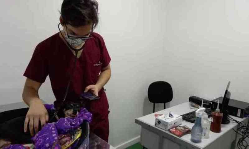 Anclivepa ameaça abandonar Hospital Veterinário, mas Prefeitura de Belo Horizonte garante funcionamento