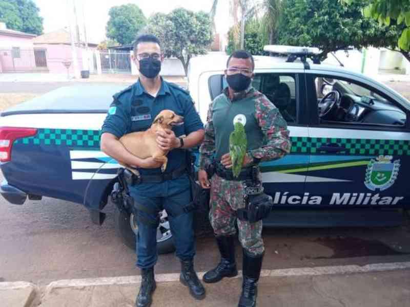 Mãe de adolescente de MS que torturou cachorro e papagaio paga multa de R$ 9 mil
