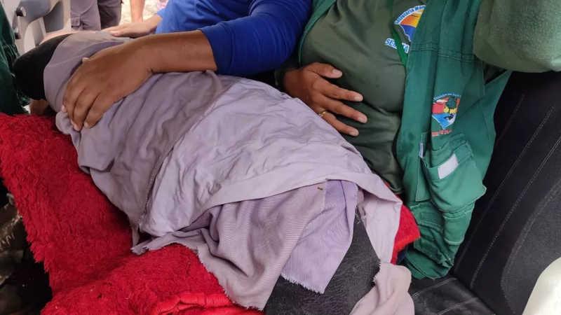 Filhote de peixe-boi é encontrado preso em malhadeira no município de Prainha, no PA