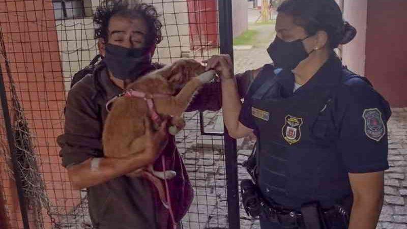 Após ser esfaqueado em assalto, morador de rua pede que guardas municipais cuidem de cão até sair do hospital, em Curitiba, PR