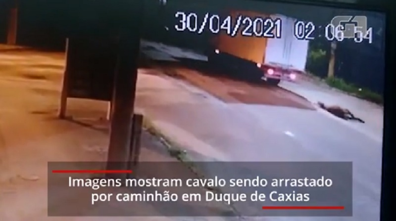 Cavalo é arrastado por caminhão em Duque de Caxias, RJ; VÍDEO