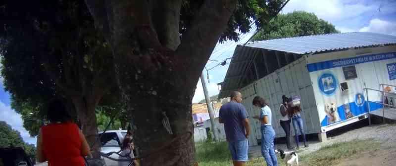 Funcionários denunciam falta de profissionais para cuidar de abrigos e fazer castração de cães e gatos no Rio de Janeiro