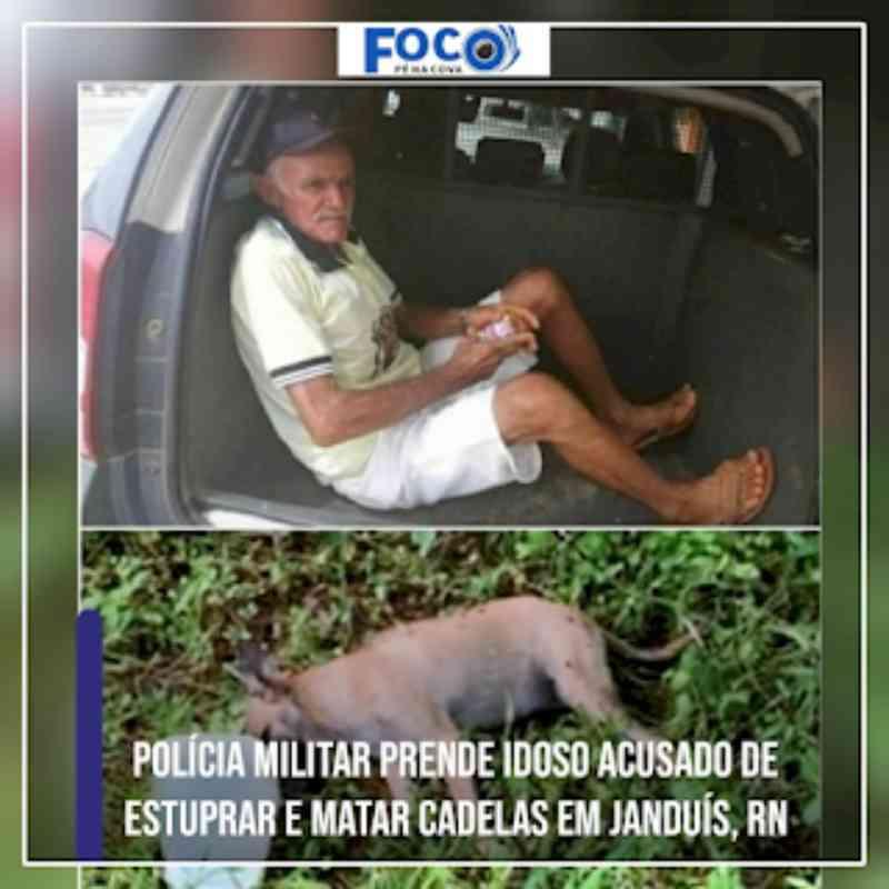 Polícia Militar prende idoso acusado de estuprar e matar cadelas em Janduís, RN