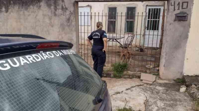 Casal se muda e abandona cães sozinhos em casa de Artur Nogueira, SP