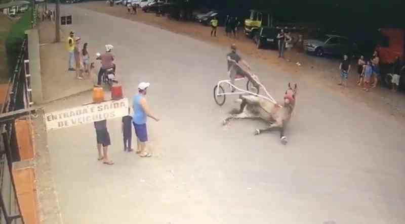 Rapaz é autuado por maus-tratos e por praticar corrida de cavalos em Cordeirópolis, SP