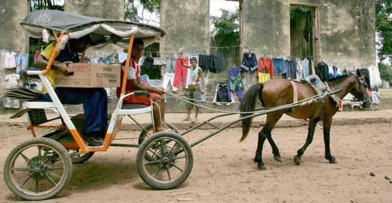 RETROCESSO! Legislativo altera Código de Proteção Animal e libera uso de charretes em Guarulhos, SP
