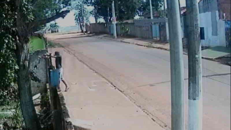 Vídeo mostra homem arremessando cachorro por cima de portão em terreno de ONG em Itapetininga, SP
