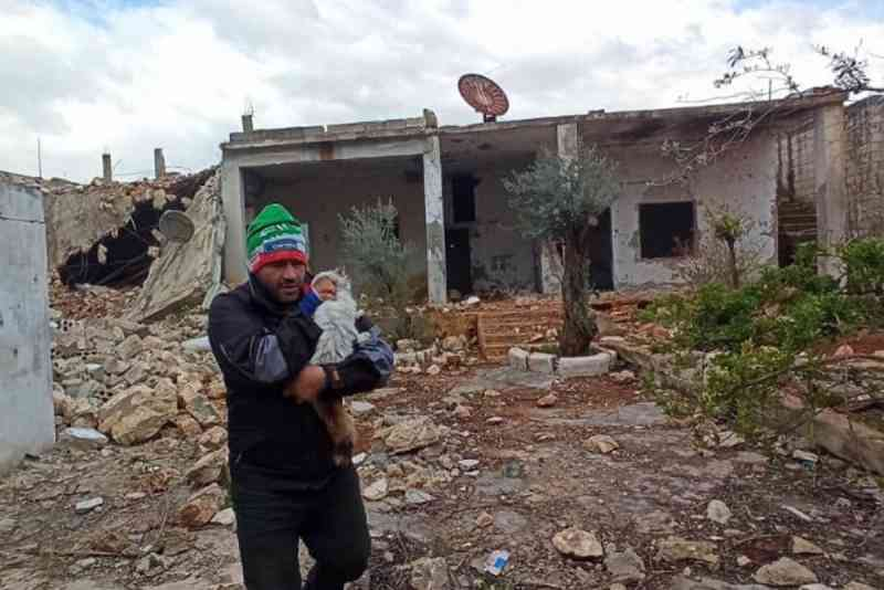 Santuário na Síria abriga mais de mil gatos resgatados da guerra
