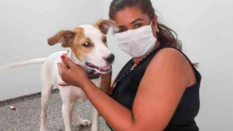 Porteiro de hospital é denunciado por maus-tratos a filhote de cachorro em Araguaína, TO