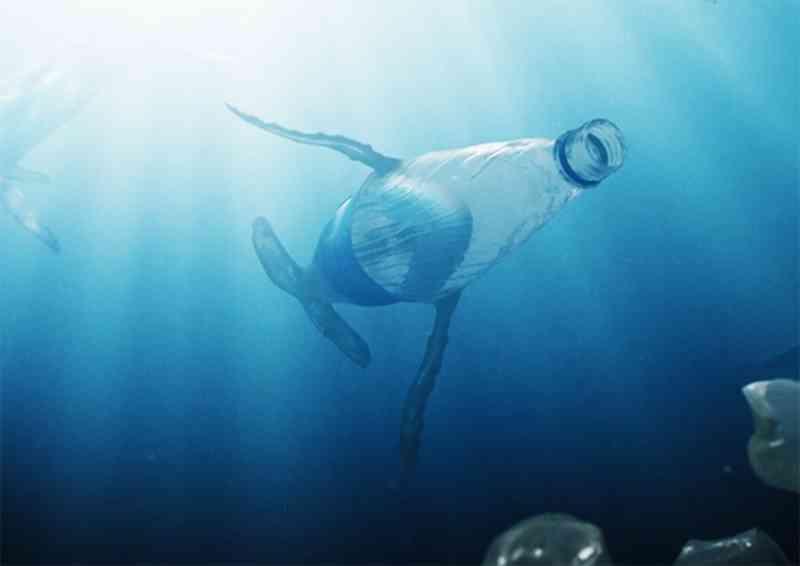 Plástico nos oceanos se torna parte da vida marinha em animação poética e contundente