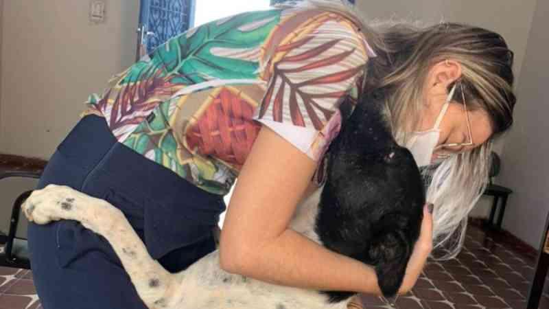 Cachorro de rua cego de um olho é adotado por servidores em Alto Santo, CE