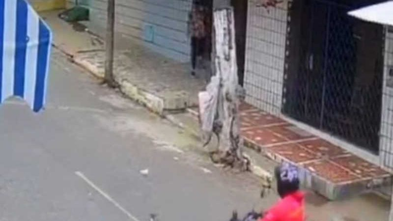 Idosa é detida após ser flagrada agredindo e matando filhotes de gatos em rua de Canindé, no Ceará