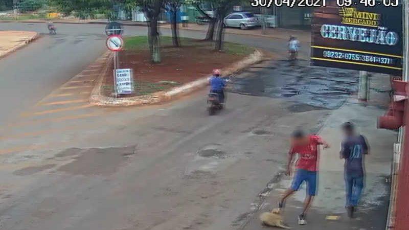 Momento em que o adolescente é gravado agredindo o animal. — Foto: Divulgação