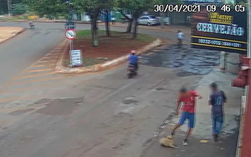 Adolescente chuta e quebra dentes de cachorro em Santa Helena de Goiás; vídeo