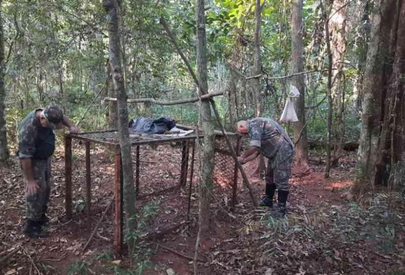 Ambiental apreende armadilha de caça de animais silvestres de grande porte em Naviraí, MS