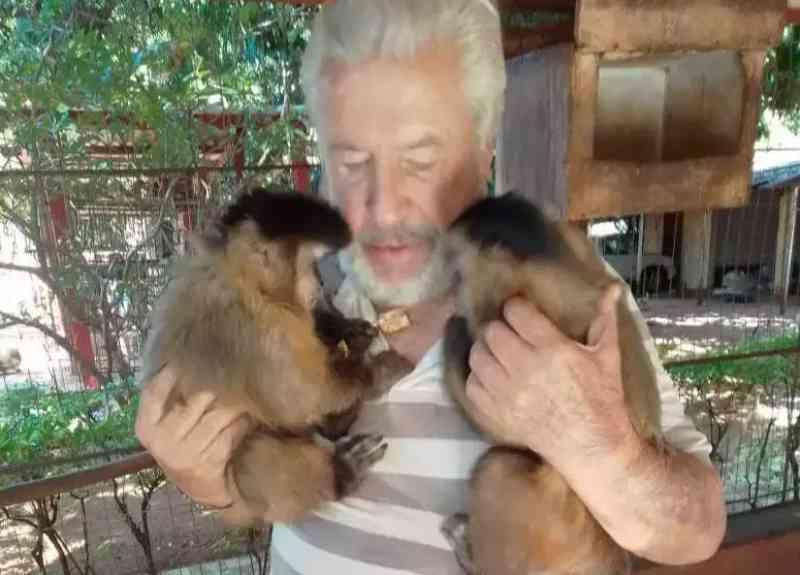 Justiça nega habeas corpus aos macacos Chiquinho e Catarina, 'filhos' de Vicente