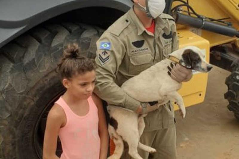 Bombeiros resgatam cachorro preso em contêiner em Lucas do Rio Verde, MT