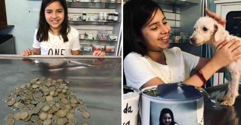 Menina de 11 anos quebra seu cofrinho e doa todas as suas economias para salvar cachorra resgatada