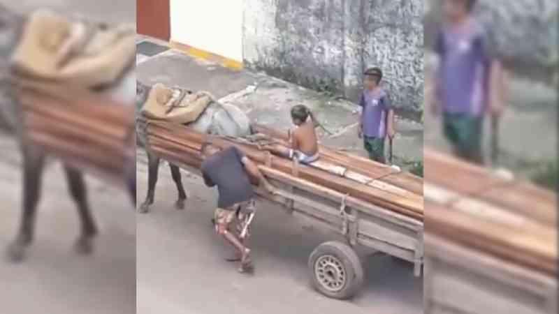 Homem força cavalo a puxar carroça pesada em Castanhal, PA