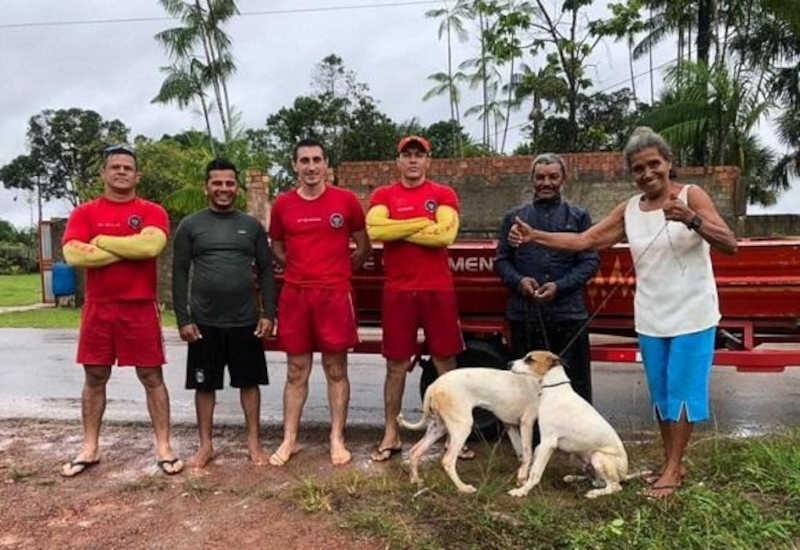 Cães ilhados por conta das cheias de rio são resgatados pelos bombeiros em Roraima