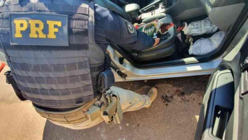 Galos 'de rinha' são encontrados no interior de veículo que trafegava pela BR-386, em Lajeado, RS