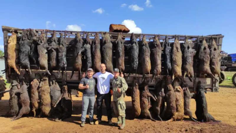 Com armas pesadas, Eduardo Bolsonaro e fazendeiros gaúchos massacram javalis