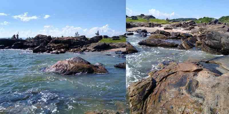 Mulher flagra maus-tratos a tartaruga-marinha em bela praia de Itanhaém, SP