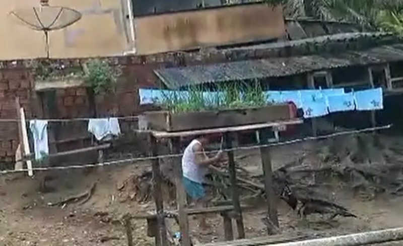 Mulher é flagrada dando pauladas em cachorro no interior do Acre e OAB diz que vai denunciar ao MP