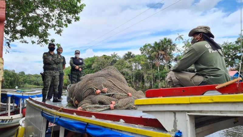 Equipe foi até a comunidade do Ariri para tentar resgatar o animal nos dias 24 e 25 de maio, mas ele não foi encontrado — Foto: Instituto Mamirauá/Divulgação