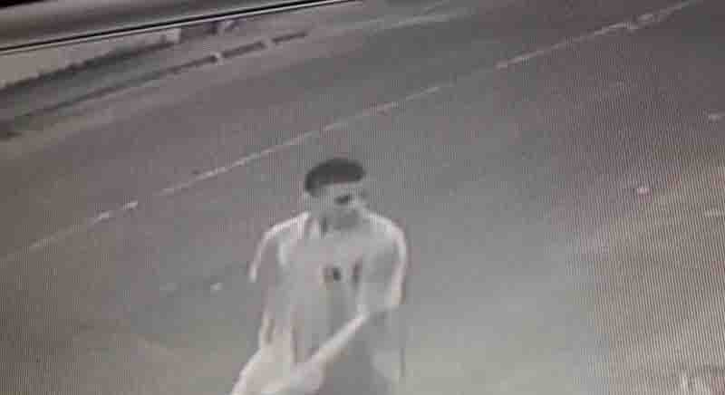Rapaz que matou gato com pedrada na Serra (ES) diz que estava com raiva após perder documento