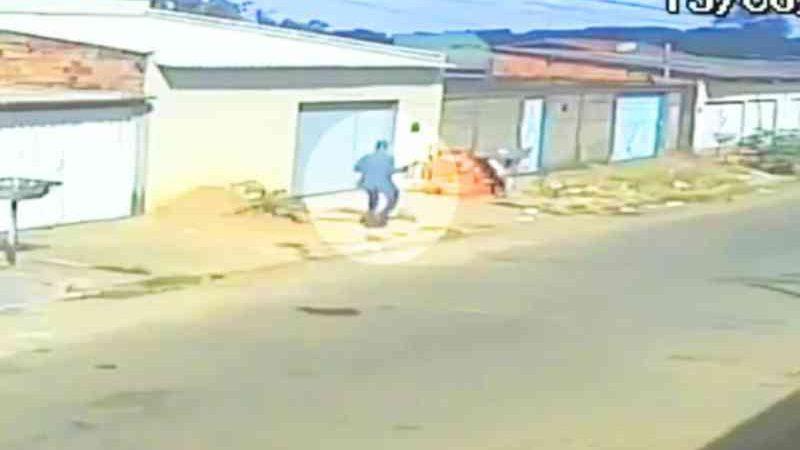 Homem mata cachorro com pedrada no Jardim Tropical, em Aparecida de Goiânia, GO