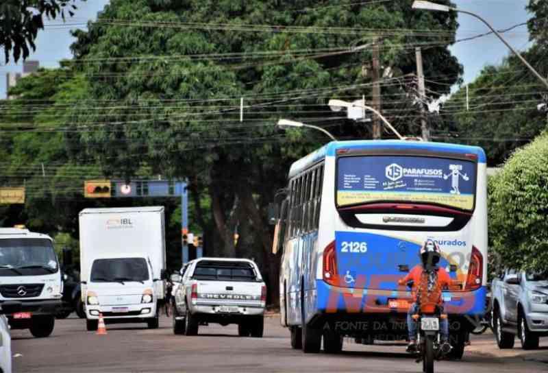 Lei que permite levar animais no transporte coletivo urbano é sancionada em Dourados, MS