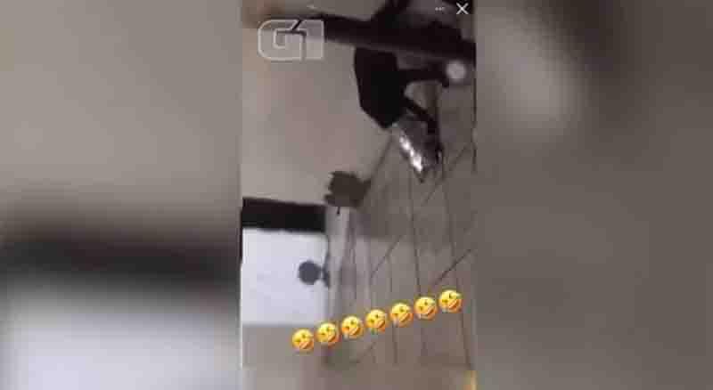 Jovem faz vídeo de cachorro com saco na cabeça no Piauí e polícia apura suspeita de maus-tratos