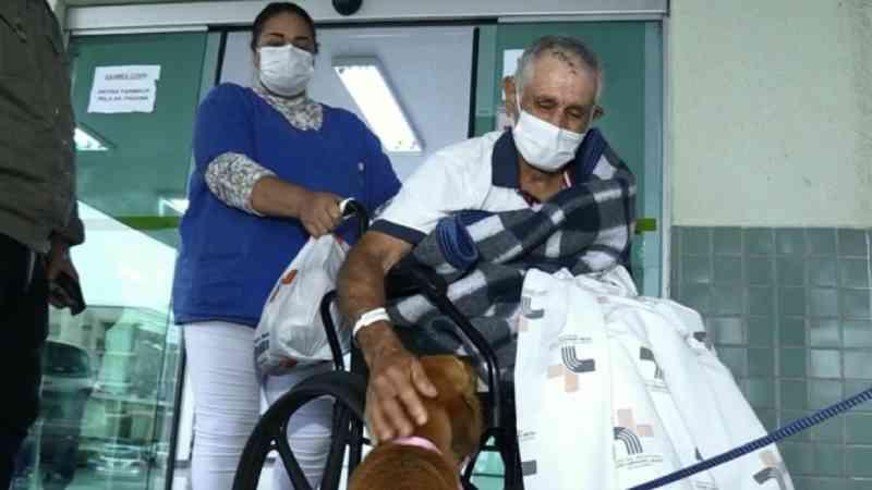 Cachorra que entrou em ambulância e aguardou por tutor no hospital reencontra tutor no PR