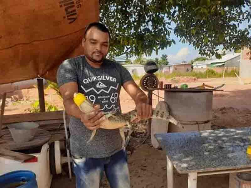 Jacaré é resgatado por agente da Guarda Ambiental. Foto: Divulgação/Prefeitura de Magé