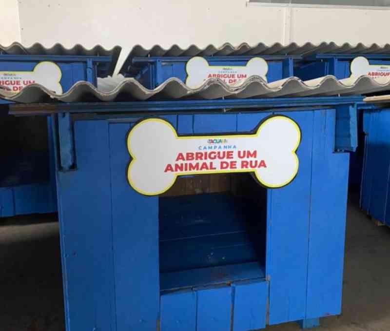 Prefeitura de Taquari (RS) distribui 20 casinhas para animais de rua