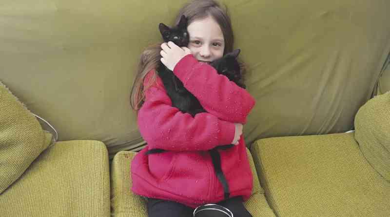 Menina de 9 anos doa sua mesada para a causa animal, em Campo Bom, RS