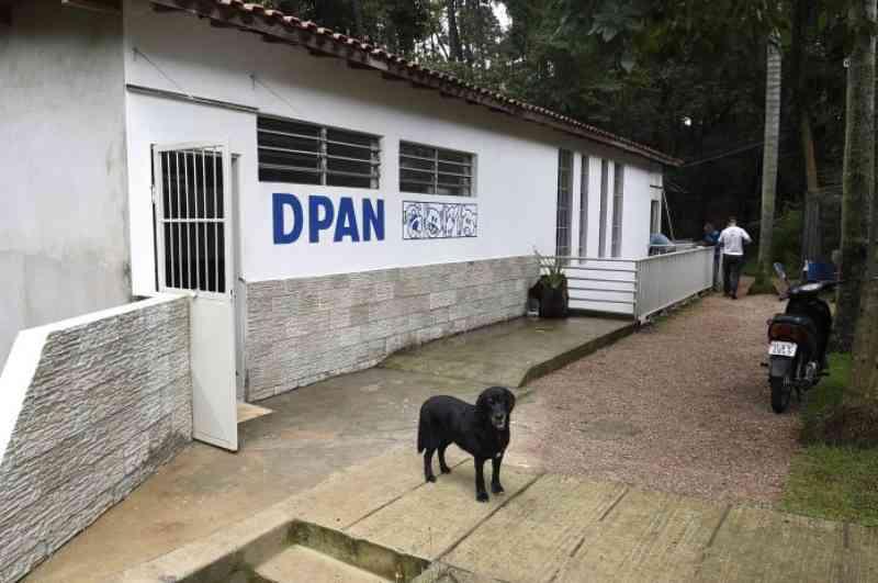 Abaixo-assinado pede mais atitude e transparência do Departamento de Proteção Animal de Guarulhos, SP