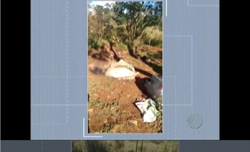 Morte de cães e urubus em Jundiapeba preocupa morador do distrito de Mogi das Cruzes, SP