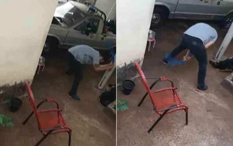 'Gritava, chorava', diz mulher sobre cadela agredida por pastor em Ribeirão Preto, SP