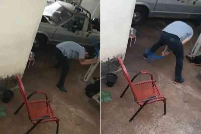 Homem é preso após agredir cão com uma mangueira de jardim em Ribeirão Preto, SP